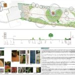 garden design, masterplan, tim austen designs, gardens, plans