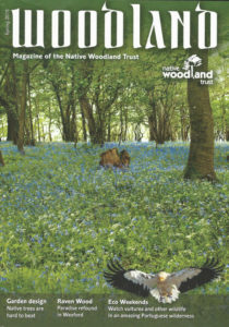 woodland-cover-page