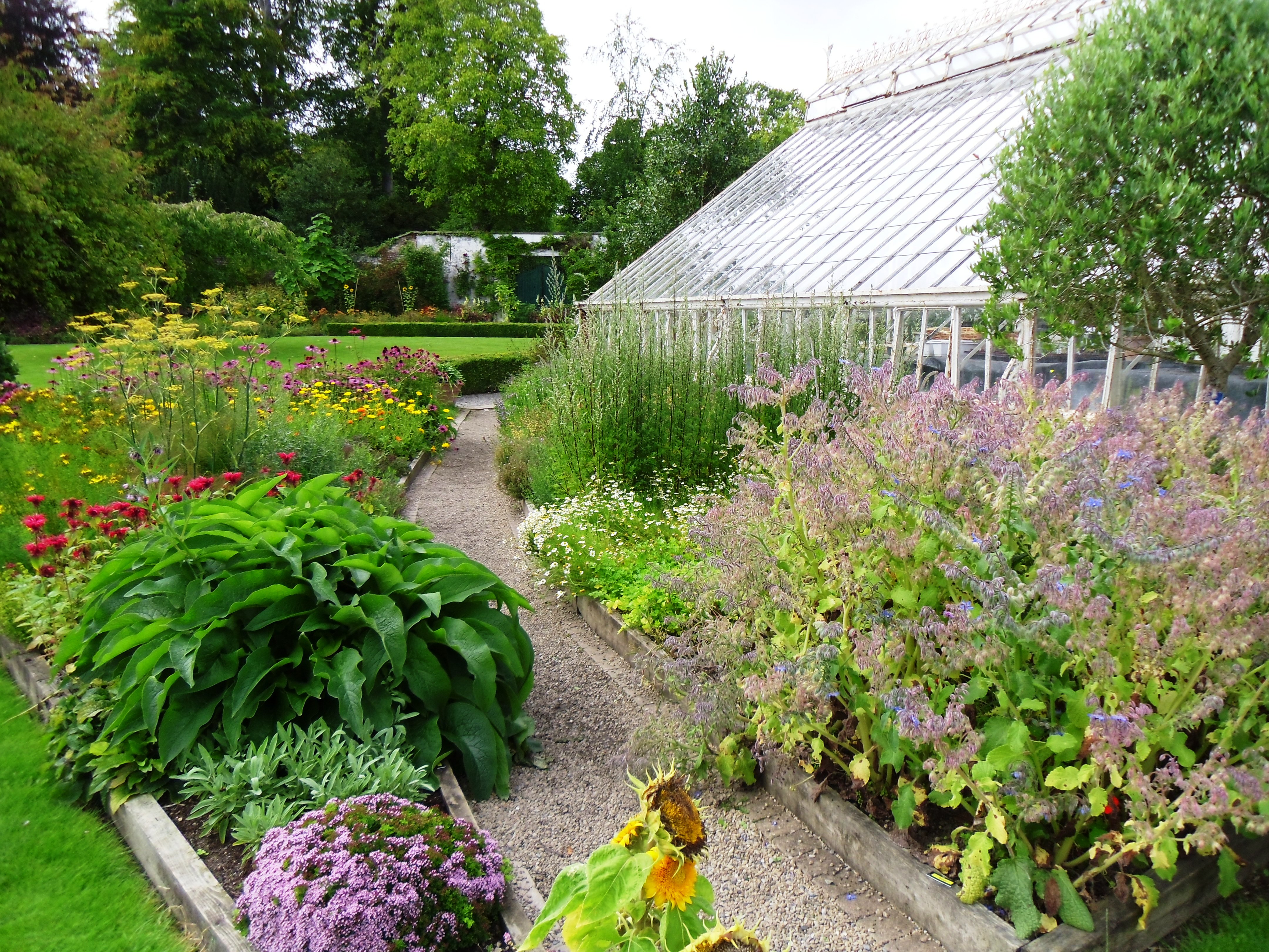 Herb garden in farmleigh house walled garden tim austen for Garden designs images pictures