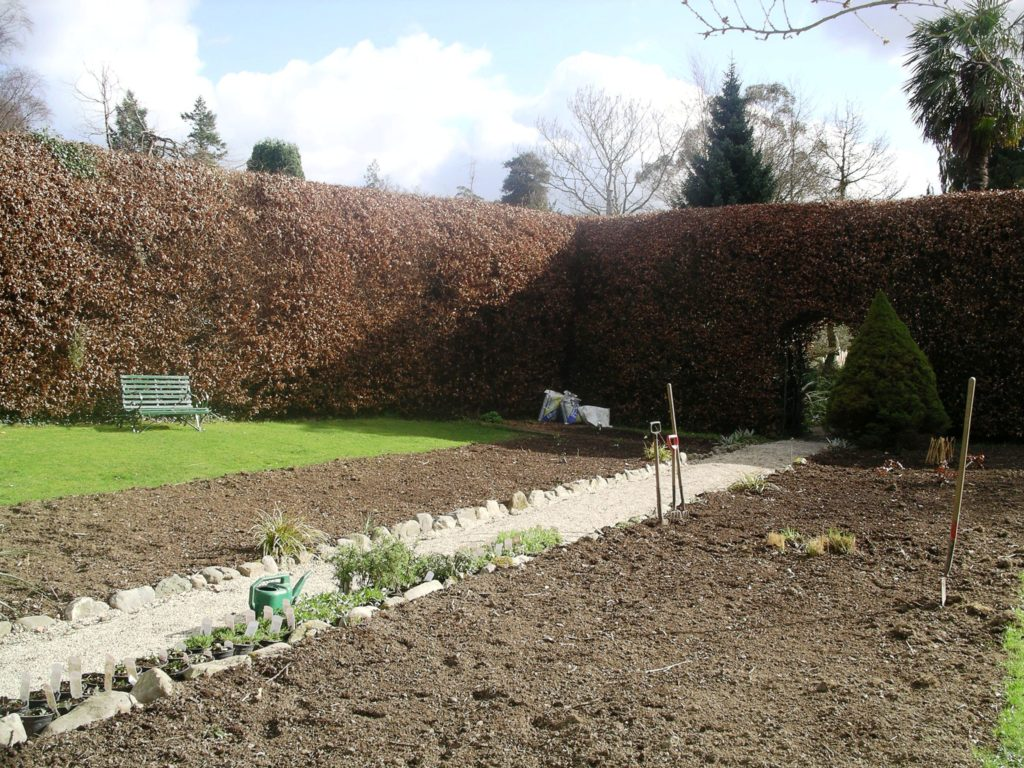 Gardening jobs for february tim austen garden designs for Garden design jobs ireland