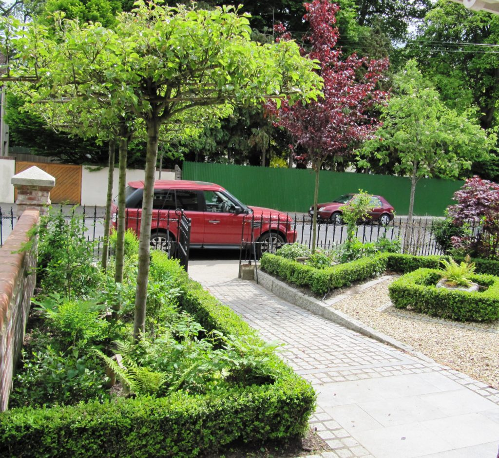 Smart front garden design in dublin tim austen garden for Garden design for small gardens