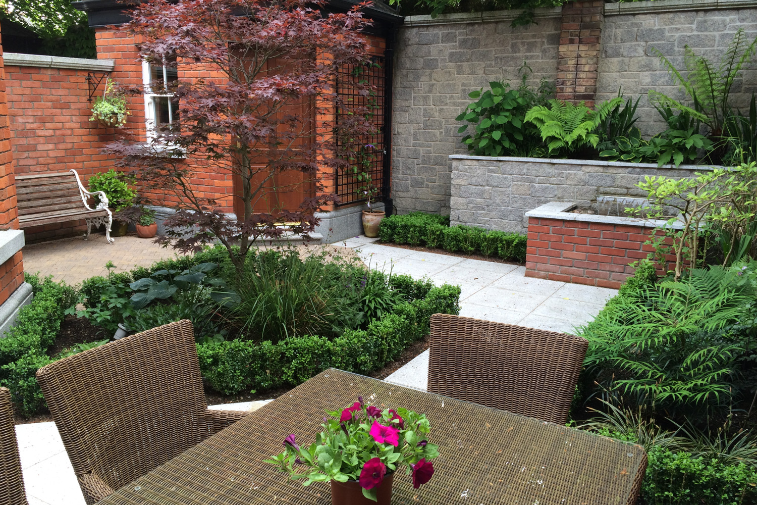 Cute courtyard garden in terenure dublin tim austen for Courtyard landscape design