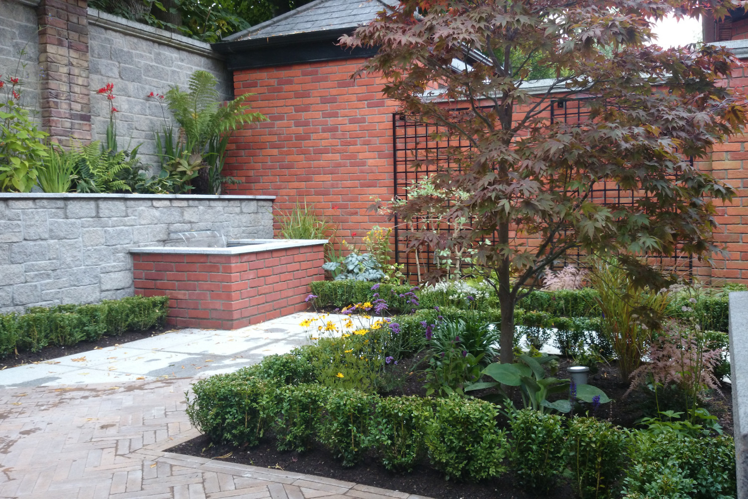 Cute courtyard garden in terenure dublin tim austen for Courtyard garden designs