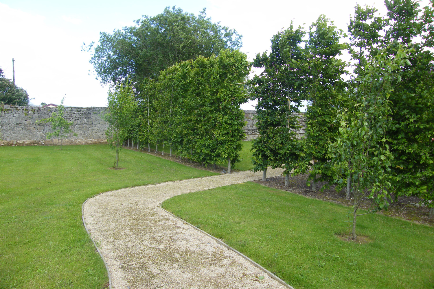 tim-austen-garden-design-rural-garden-cahir-tipperary-11