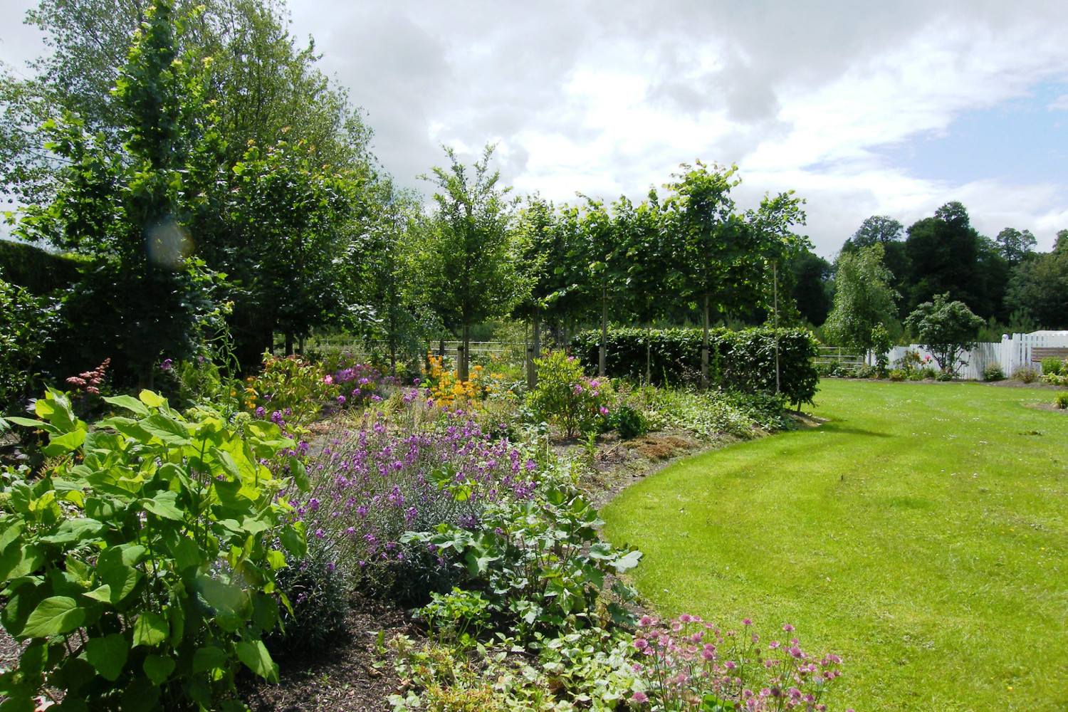 tim-austen-garden-design-rural-garden-cahir-tipperary-6