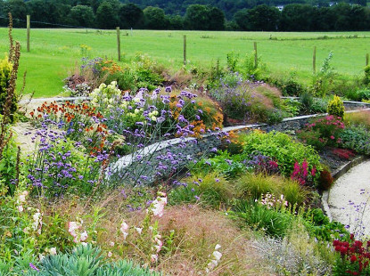 floral abundance garden in killaloe co clare - Garden Design Kerry