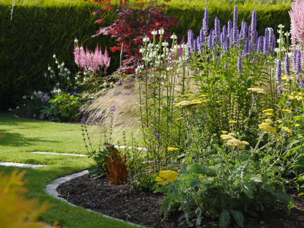 garden care, maintenance, landscape design, gardening, tips, ideas