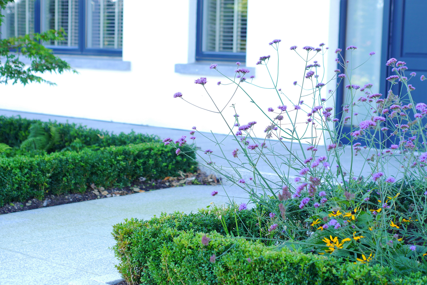 house entrance, front door, garden, low maintenance, planting, limestone, paving, well being